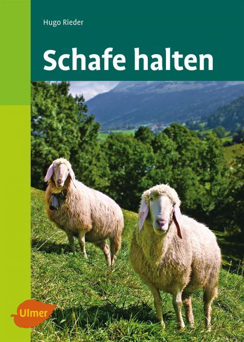 Schafe halten cover