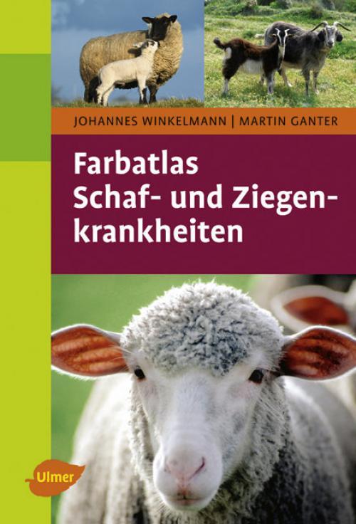 FA Schaf- und Ziegenkrankheiten cover
