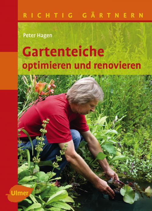 Gartenteiche optimieren und renovieren cover