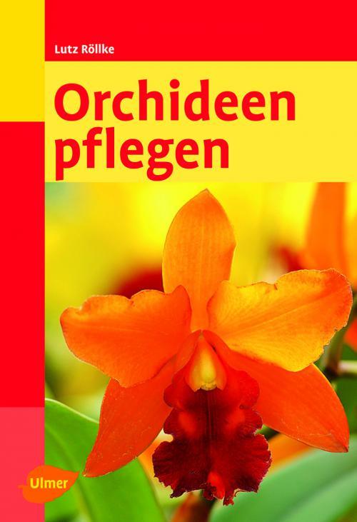 Orchideen pflegen cover