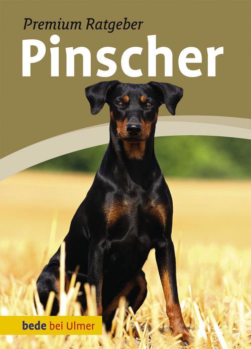 Pinscher cover