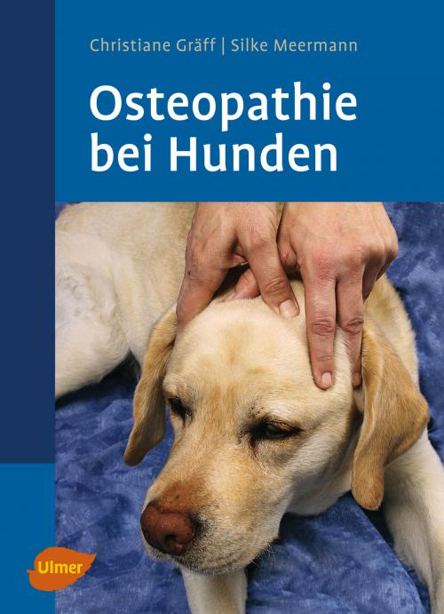 Osteopathie bei Hunden cover