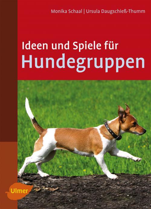 Ideen und Spiele für Hundegruppen cover