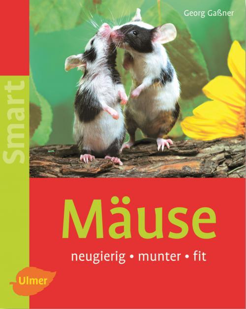 Mäuse cover