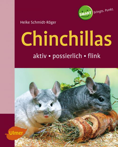 Chinchillas cover