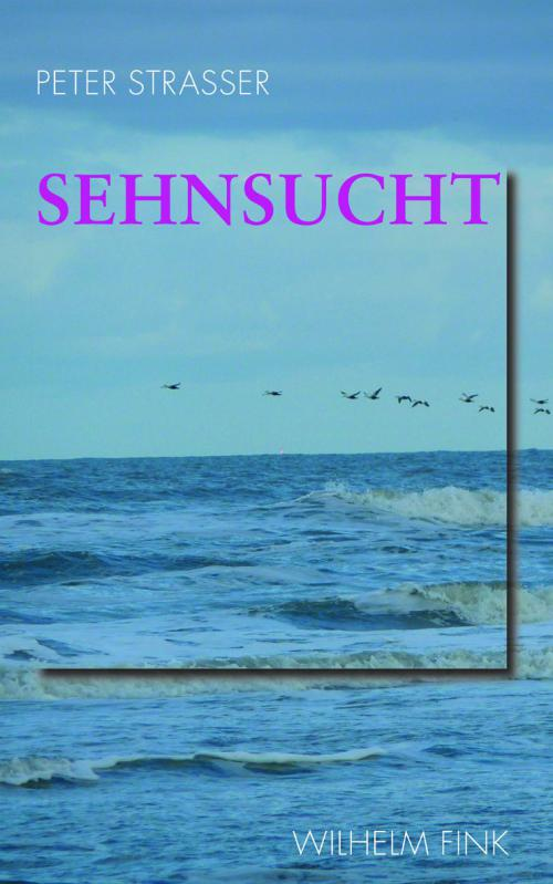 Sehnsucht cover