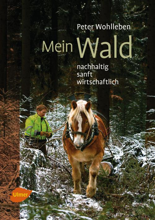 Mein Wald cover