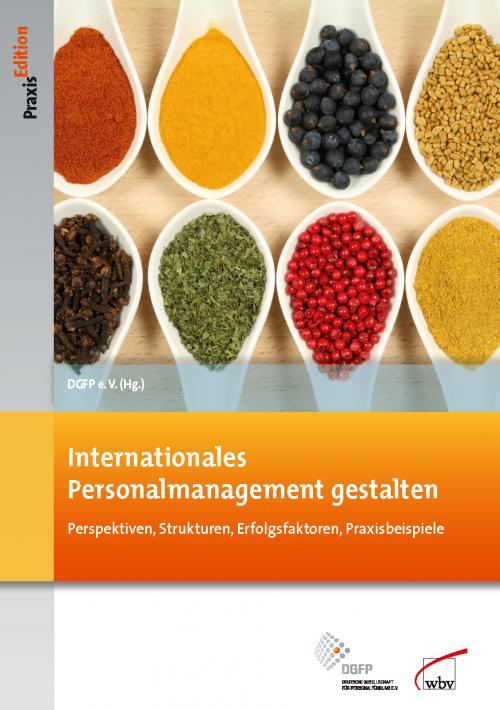Internationales Personalmanagement gestalten cover