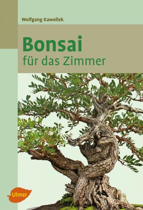 Bonsai für das Zimmer cover