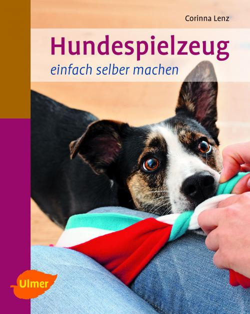Hundespielzeug selber machen cover