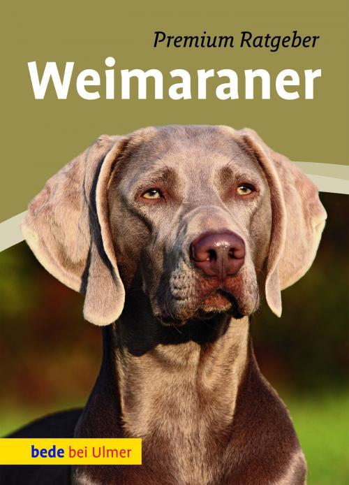 Weimaraner cover