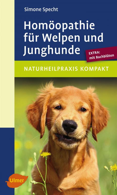 Homöopathie für Welpen und Junghunde cover