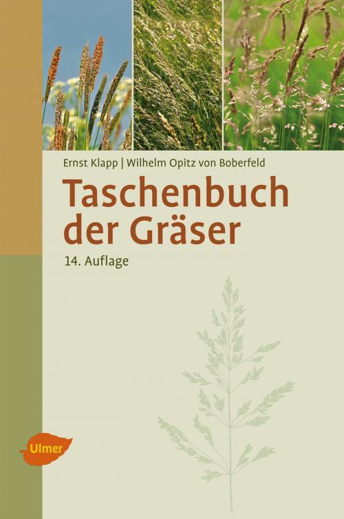 Taschenbuch der Gräser cover