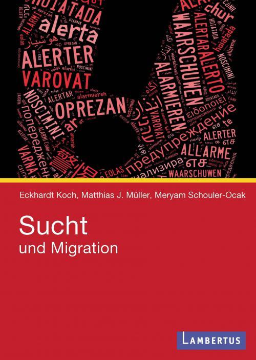 Sucht und Migration cover