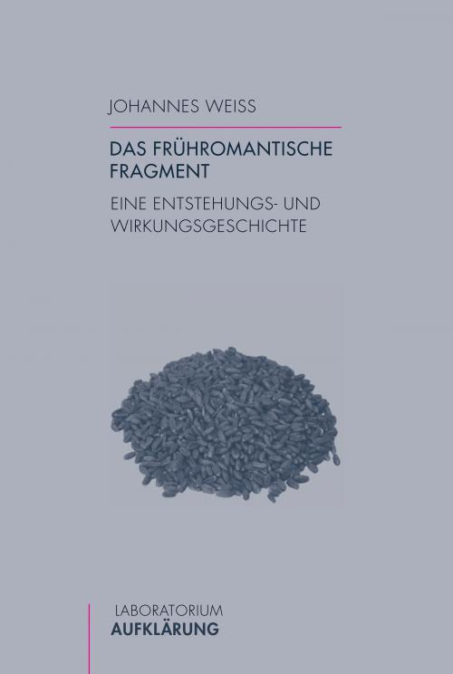 Das frühromantische Fragment cover