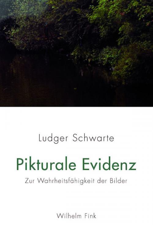 Pikturale Evidenz cover