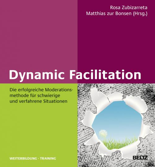 Dynamic Facilitation cover