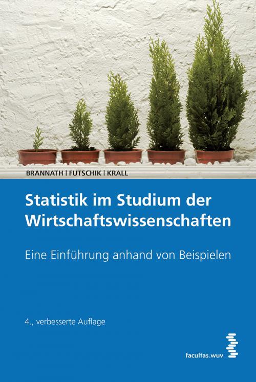 Statistik im Studium der Wirtschaftswissenschaften cover