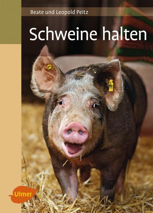 Schweine halten cover