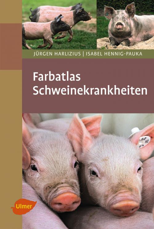 Farbatlas Schweinekrankheiten cover
