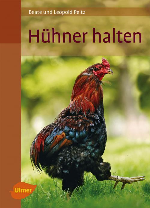 Hühner halten cover