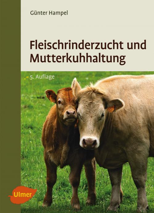 Fleischrinderzucht und Mutterkuhhaltung cover