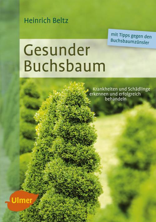 Gesunder Buchsbaum cover