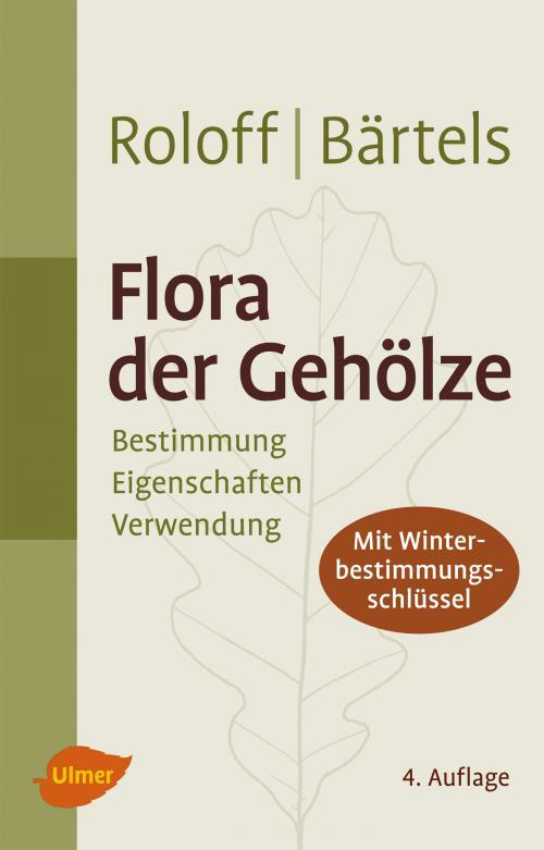 Flora der Gehölze cover
