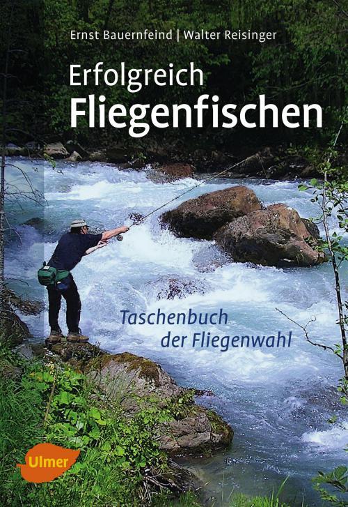 Erfolgreich Fliegenfischen cover