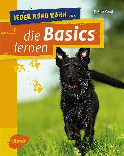 Jeder Hund kann die Basics lernen cover