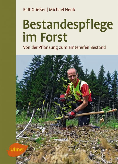 Bestandespflege im Forst cover