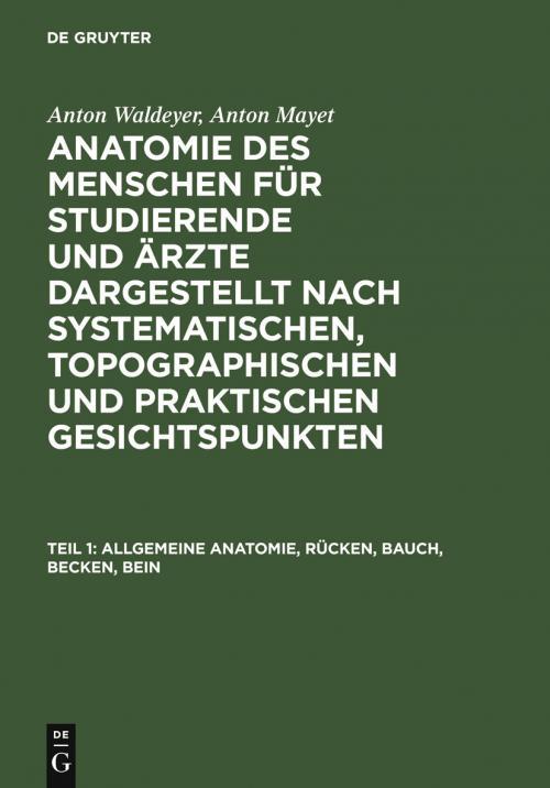 Allgemeine Anatomie, Rücken, Bauch, Becken, Bein cover
