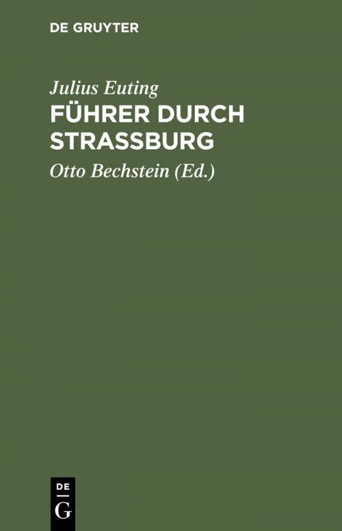 Führer durch Strassburg cover