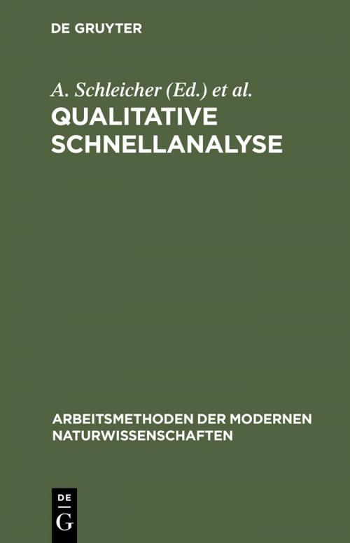 Qualitative Schnellanalyse cover