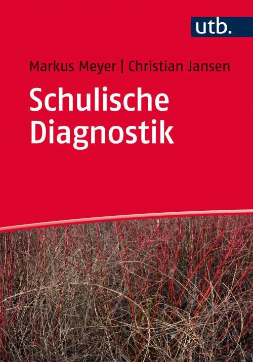 Schulische Diagnostik cover