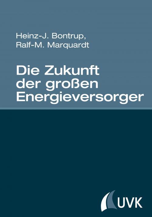 Die Zukunft der großen Energieversorger cover