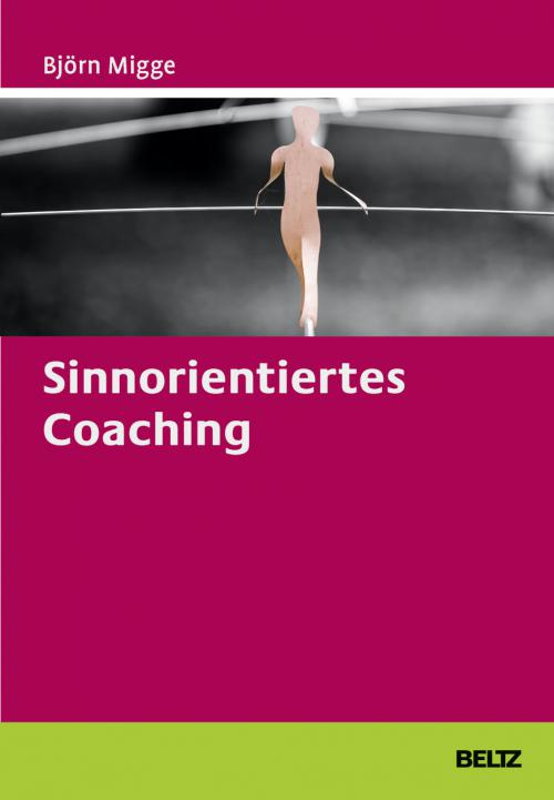 Sinnorientiertes Coaching cover
