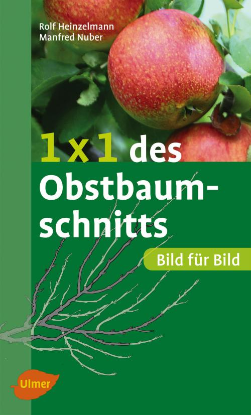 1 x 1 des Obstbaumschnitts cover