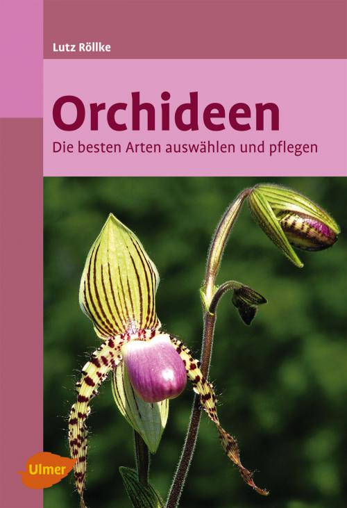 Orchideen cover