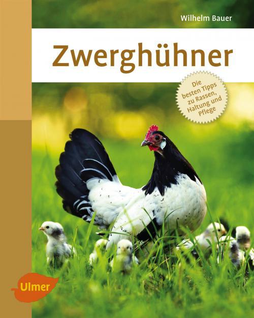 Zwerghühner cover
