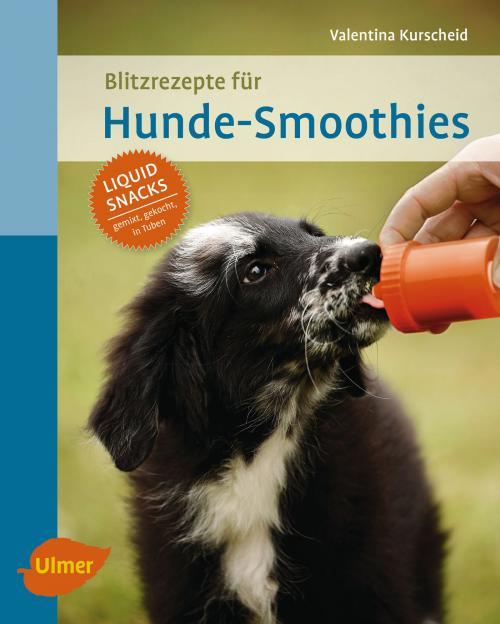Blitzrezepte für Hunde-Smoothies cover