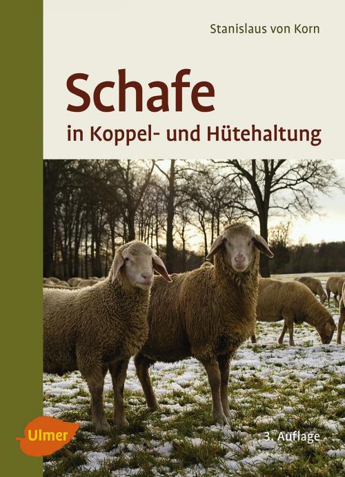 Schafe in Koppel- und Hütehaltung cover