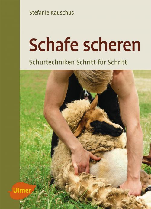 Schafe scheren cover