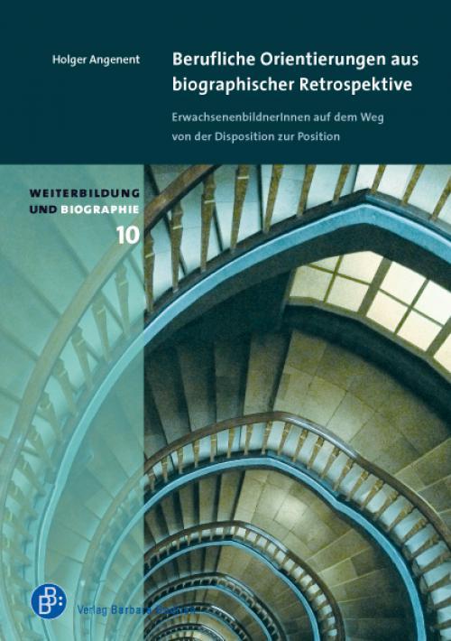 Berufliche Orientierungen aus biographischer Retrospektive cover