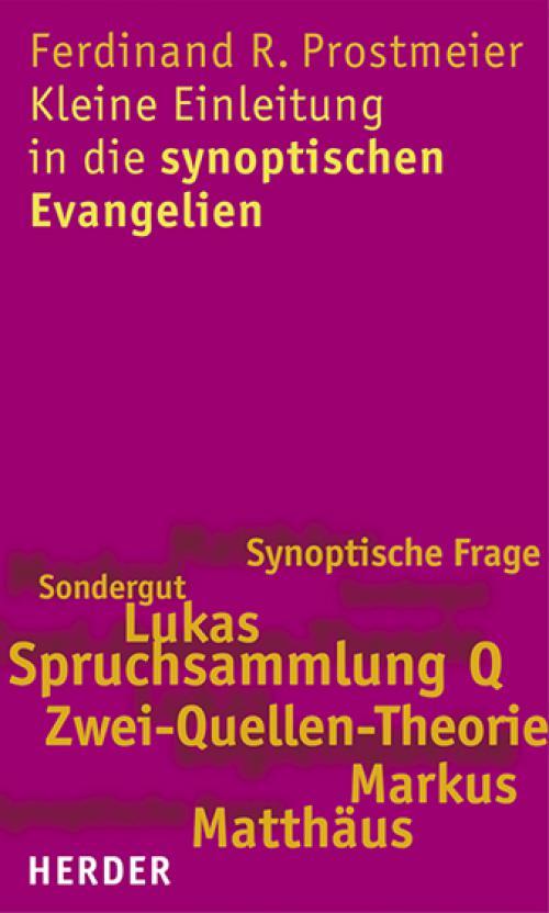 Kleine Einleitung in die synoptischen Evangelien cover