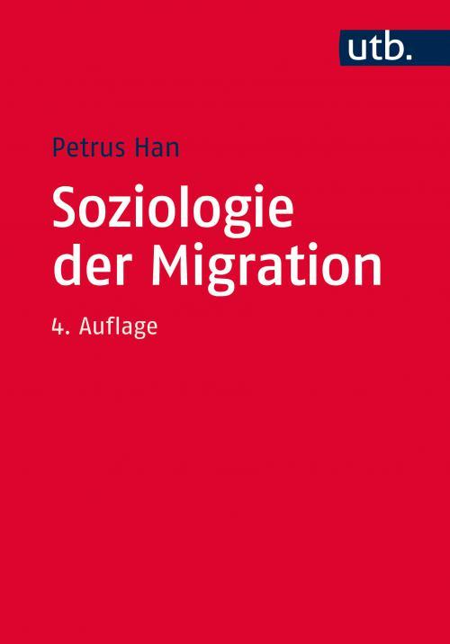 Soziologie der Migration cover