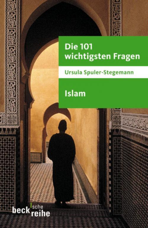 Die 101 wichtigsten Fragen - Islam cover