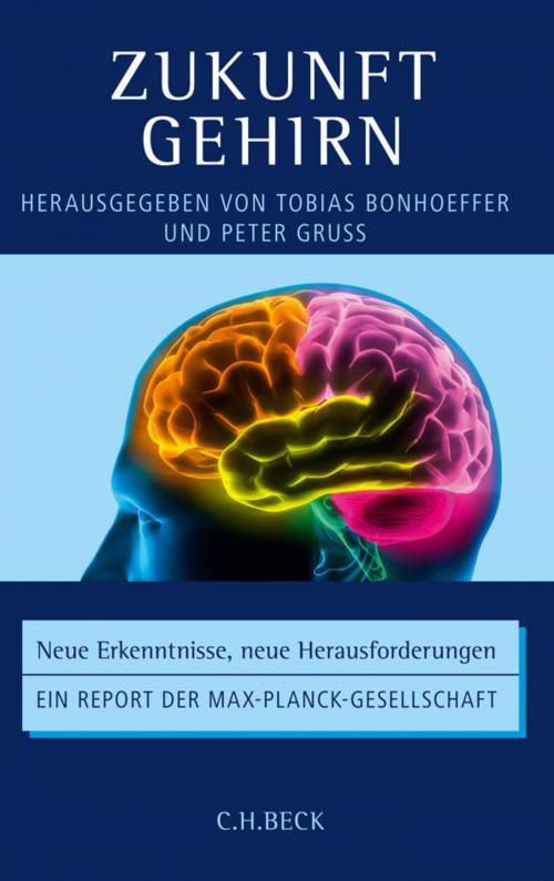 Zukunft Gehirn cover