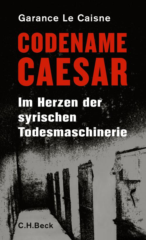 Codename Caesar cover