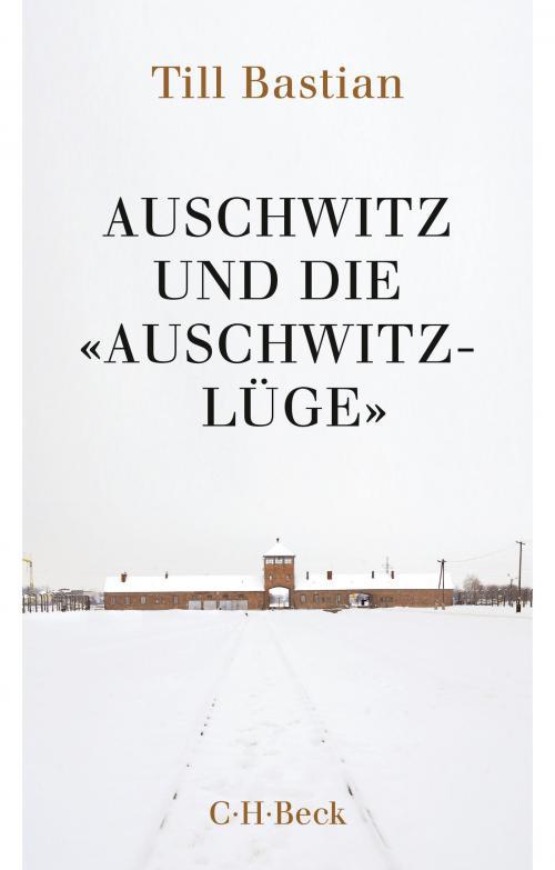 Auschwitz und die 'Auschwitz-Lüge' cover